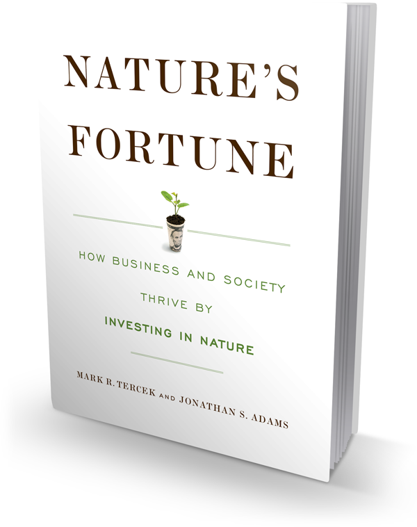 Nature's Fortune book cover