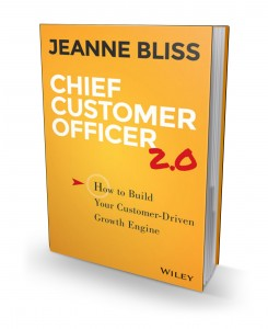 Chief Customer Officer 2.0 3d